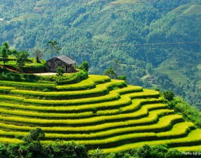 North Vietnam Tours